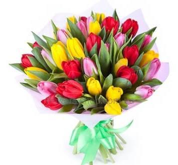 Разноцветные тюльпаны купить заказать цветы комнатные по почте
