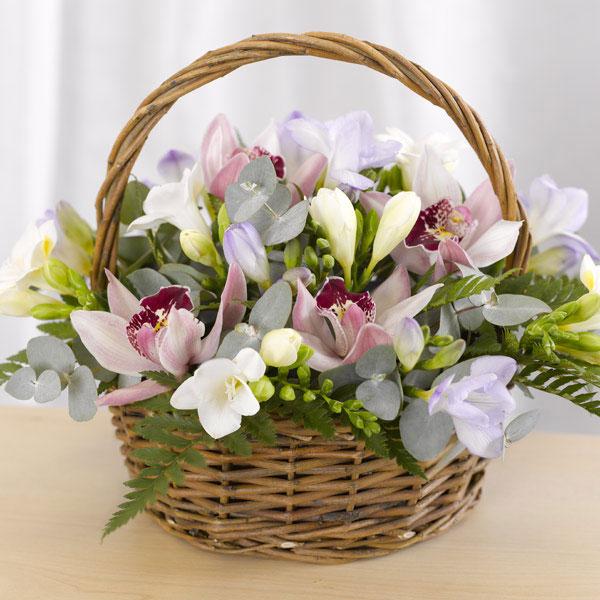 орхидеи в корзинке