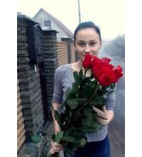 Красные голландские розы доставлены в Умань