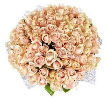 Букет роз Свит Аваланч упакованных в сиреневую сизаль