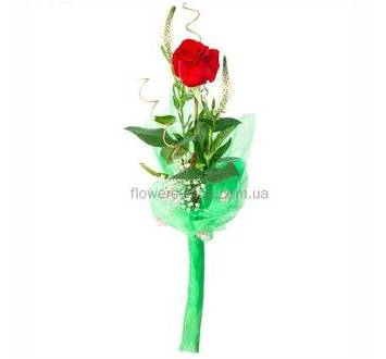Одна красная роза с гипсофилой и вероникой