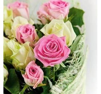 Розы Аква и Аваланч в сизали