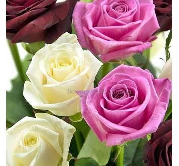 Сборный букет из роз, лента