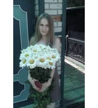 Bouquet of daisies with delivery to Odessa