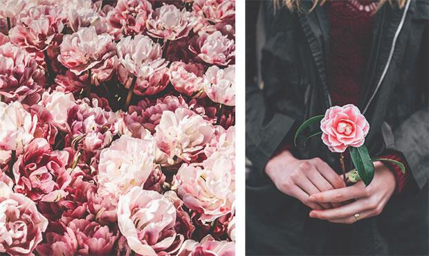 красивые цветы в руках
