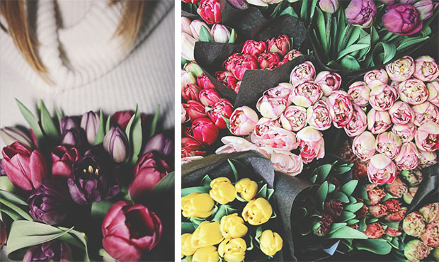 красивое фото цветов