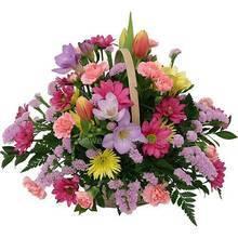 Цветочная корзина с фрезиями, хризантемами, гвоздиками и тюльпанами