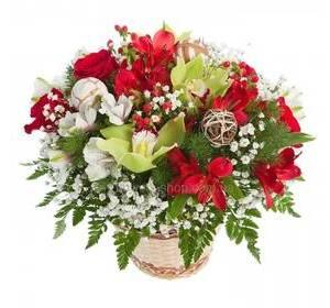 Композиция в кашпо из красных альстромерий, орхидей, гипсофилы и ледерварена
