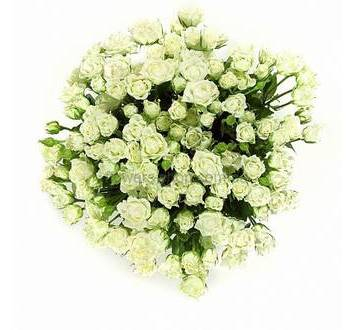 Белые веточные розы