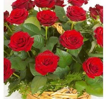 Красные розы в корзине с зеленью