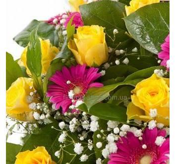 Желтые розы, розовые герберы, гипсофила
