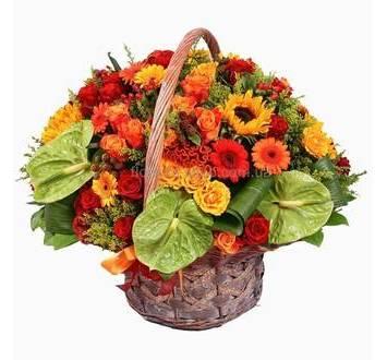 Антуриумы, солидаго, гиперикум, розы, гелиантусы и герберы в цветочной корзине