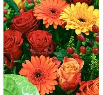 Розы, герберы, зеленый антуриум, декоративная зелень