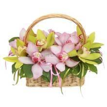 Разноцветные орхидеи цимбидиум в корзине