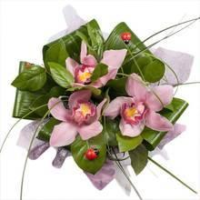 Букет с розовыми орхидеями и декоративной зеленью