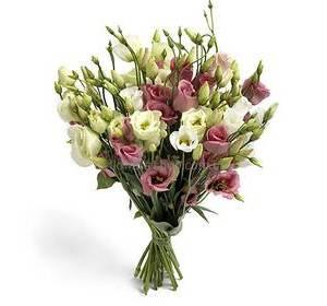Круглосуточно цветы смоленск