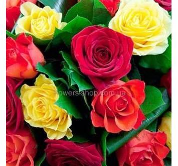 Разноцветные розы, зелень аспидистры