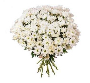 Белые хризантемы, поштучно