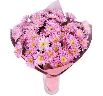 Букет из розовых хризантем, в упаковке