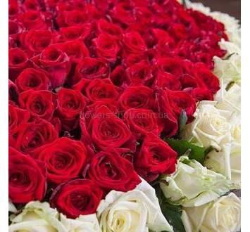 Красные и белые розы в форме сердца