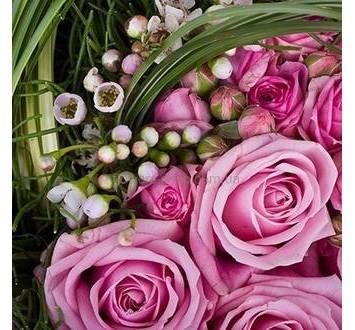 Розовые розы, бувардия, зелень берграсса и аспидистры
