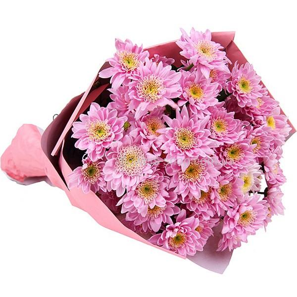 Роз букет из бело розовых хризантем цветы симферополе