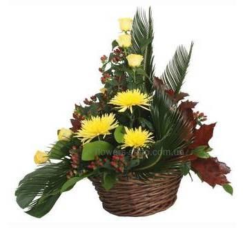 Корзина из желтых роз и хризантем, гиперикума, фениксом и декоративной зеленью